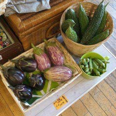 ぴちぴちのお野菜届いてお店に並べました。