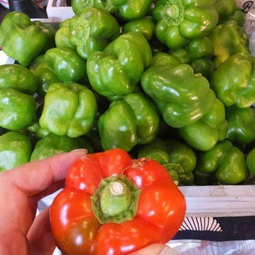野菜、特に今日はピーマンだらけです。