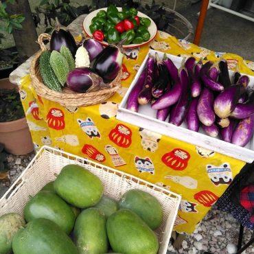 久しぶりにお店にお野菜並びます。