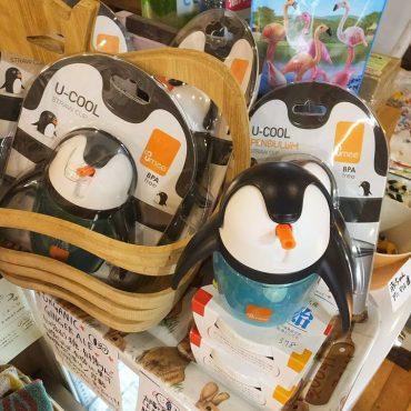 これは一目惚れですよね。ペンギンです。